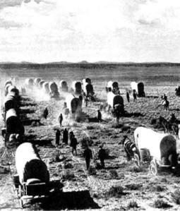 pioneer-wagons