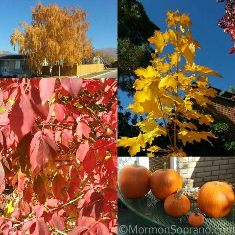Fall.2013.1
