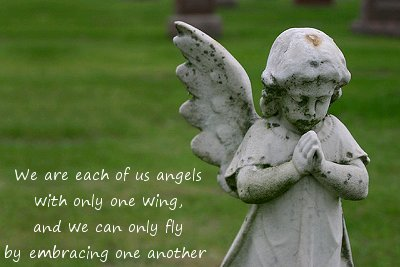 angels-one-wing