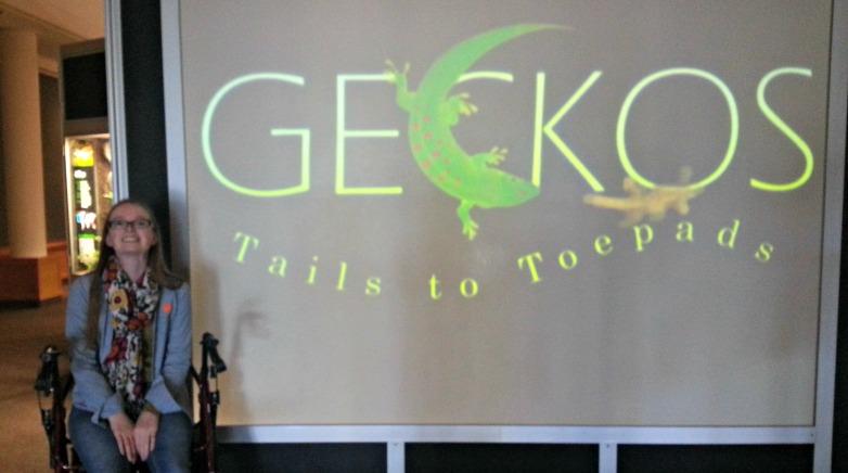 gecko-exhibit-bozeman-montana-1