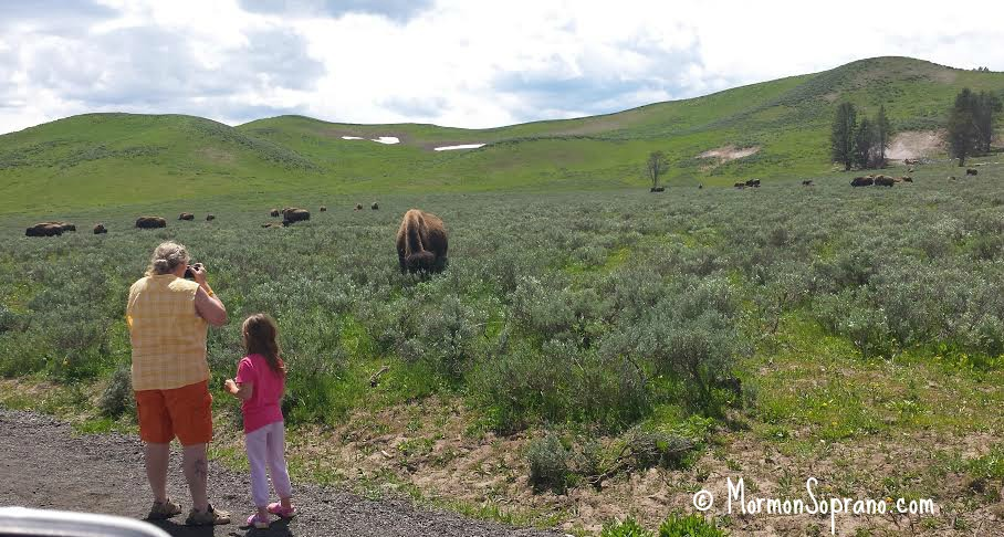 Yellowstone Grandma with a death wish, taking the child along