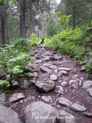 Rocky & Steep Trail!