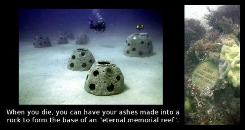 Coral-Memorial-Reef-burial