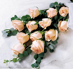 dozen-peach-roses