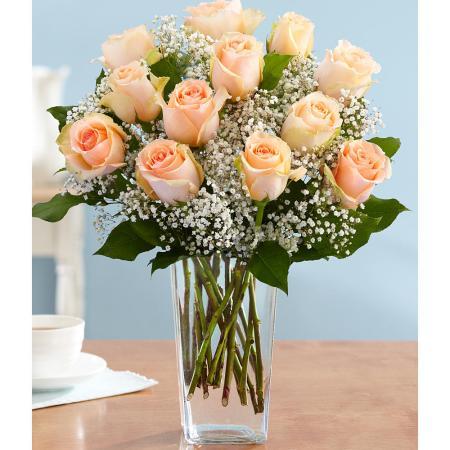 peach-roses-vase