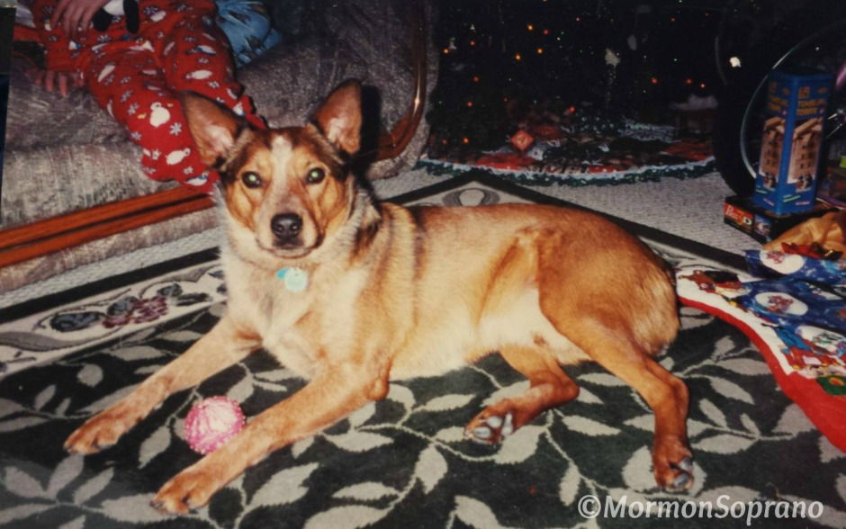 Joey's First Family Christmas - 2001