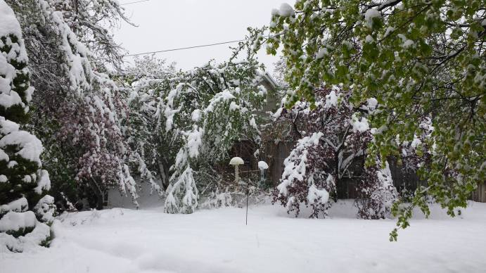 April 15, 2015 - Bountiful Utah