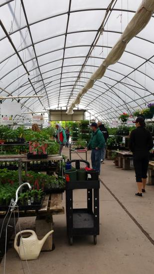 The Peppers and Tomatoes Greenhouse