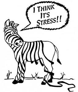 stress-losing-it