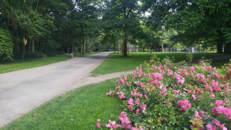 The Pretty little park