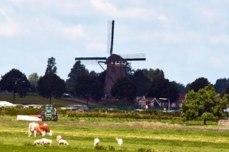 Windmill near Rotterdam photo credit Marilyn Neilson