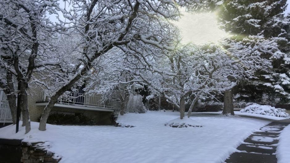 111716-snow