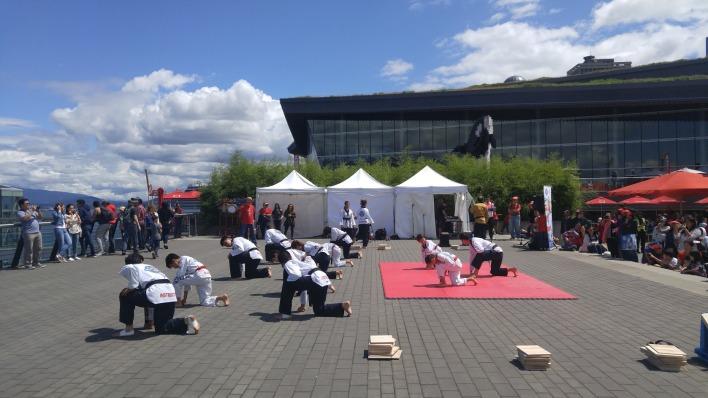 A choreographed Karate performance