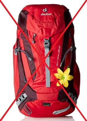 Dueter-ACT-28L