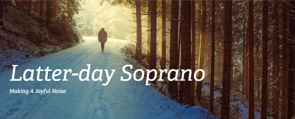 LDSop walk winter